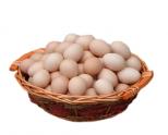 土鸡蛋案例