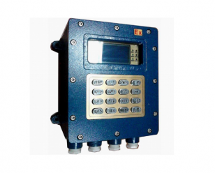 经济型定量控制仪(隔爆型,不带刷卡)